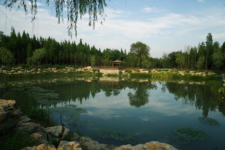 宿迁· 三台山森林公园